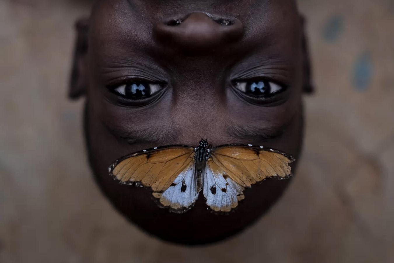 Бенсон и бабочка, © Эмилио Апарисио Родригес, Глобальный победитель, Фотоконкурс Metro Photo Challenge