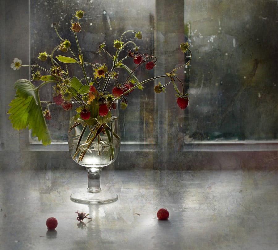 © Тамара Коренева, Фотоконкурс «Мои натюрморты»
