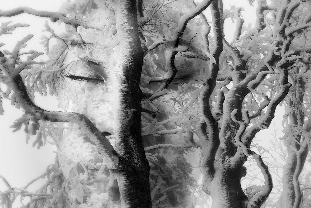 Безмолвие, © Джон Губертини (Италия), Абстрактный фотограф года 2018 (профессионал), Фотоконкурс Monochrome Awards