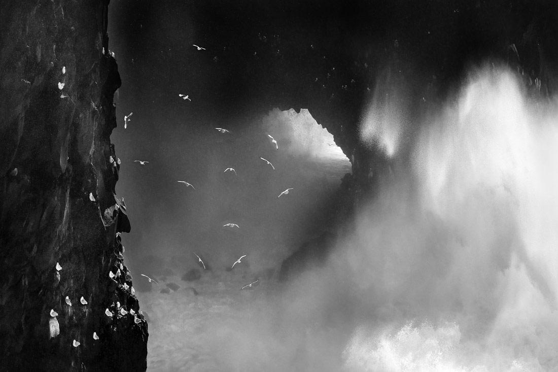 Яростный океан, © Ромен Торнай, 1-е место в категории «Живая природа», одиночное фото, Конкурс чёрно-белой фотографии MonoVisions