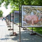 Фотоконкурс «Россия. Идеи для путешествий» телеканала «Моя Планета»