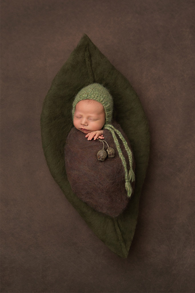 Плод эвкалипта, © Сара Гейдж, Австралия, Фотоконкурс новорожденных