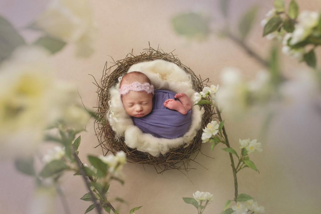 Белые цветы, © Наташа Дьюин, Канада, Фотоконкурс новорожденных