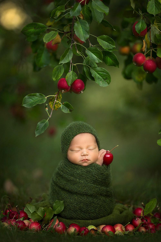 Яблочный малыш, © Кассандра Джонс, Канада, Фотоконкурс новорожденных