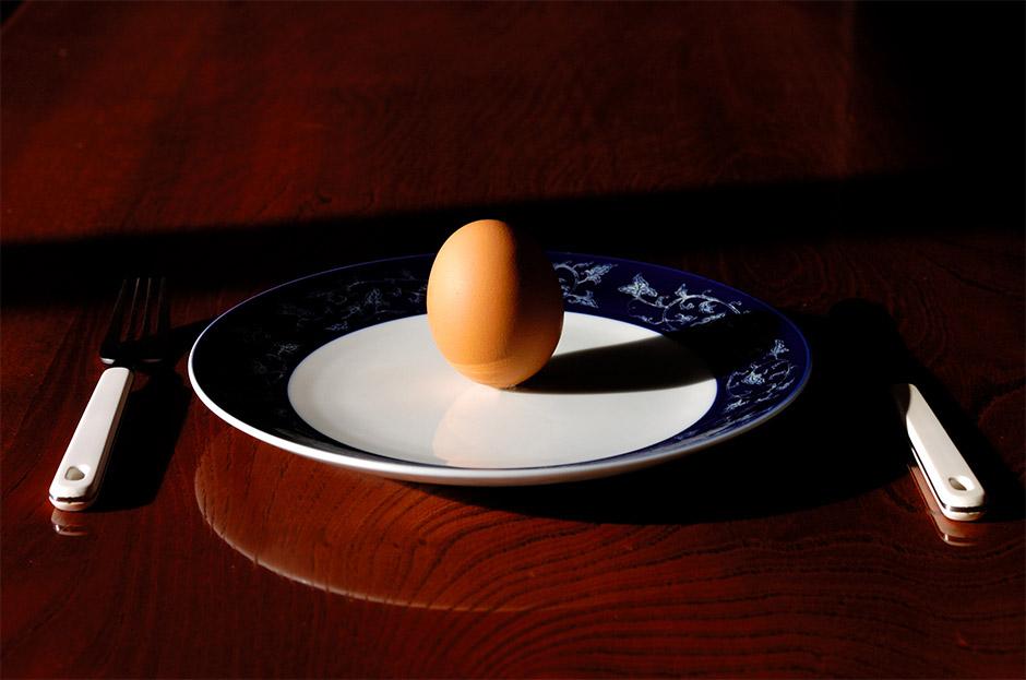Что мы сегодня будем делать на завтрак?, © Минору Андо, 2-я премия, Фотоконкурс Nikon