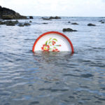 Экологическая собственность, © Уилфред Лим, 2-я премия, Фотоконкурс Nikon