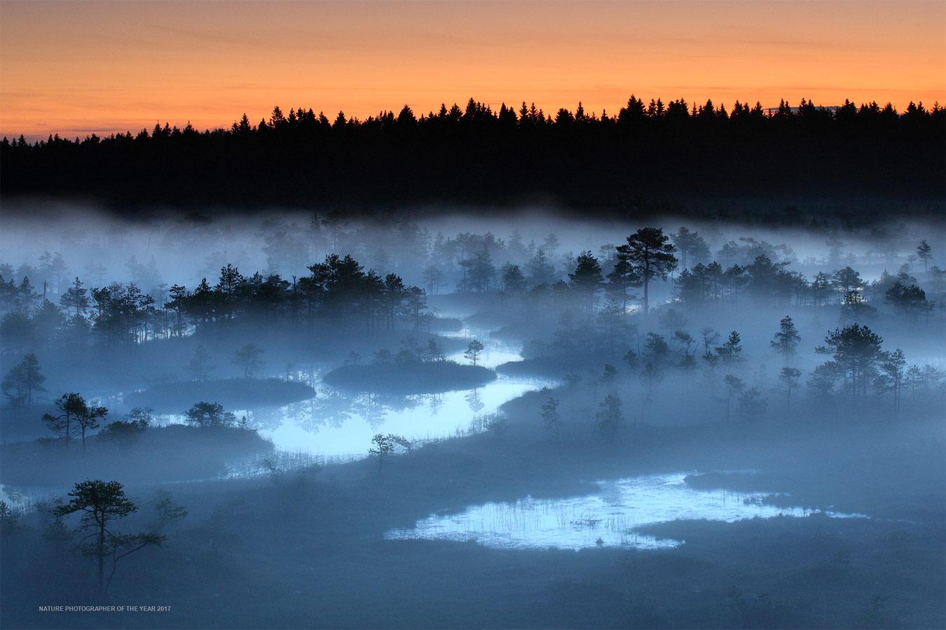 Рано утром на болоте, © Ремо Сависаар, Победитель категории «Пейзажи», Фотоконкурс «Природный фотограф года»