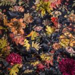 «Флора и фоксна», © Пэтти Кэрролл / Patty Carroll, Чикаго, США, Финалист категории «Изобразительное искусство / Персональная», Фотоконкурс натюрморта «Объекты желания» — Objects of Desire