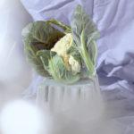«Интуитивные желания», © Эвонн Беллефлер / Evonne Bellefleur, Торонто, Канада, Финалист категории «Коммерческая / Редакционная», Фотоконкурс натюрморта «Объекты желания» — Objects of Desire