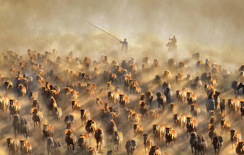 © Гох Ви Сенг, Фотограф года — Редакционный — Серебро, Фотоконкурс One Eyeland Photography Awards