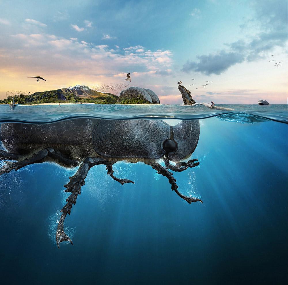 © Лучано Кениг Дюпон, Фотограф года — Специальный — Золотой, Фотоконкурс One Eyeland Photography Awards