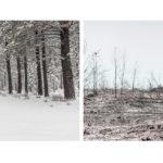 «Художник», © Николо Серторио / Nicolò Sertorio, Окленд, США, Первое место в категории «Идеи», Фотоконкурс «Одна жизнь» — One Life Awards