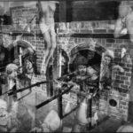 «Истребление», © Гарри Уилсон / Harry Wilson, Бейкерсфилд, США, Первое место в категории «Идеи», Гран-при конкурса, Фотоконкурс «Одна жизнь» — One Life Awards