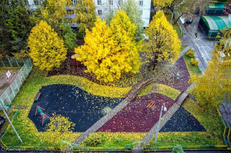 Осень из окна, © Сергей Ключарев, Москва, Фотоконкурс «Осень в городе»