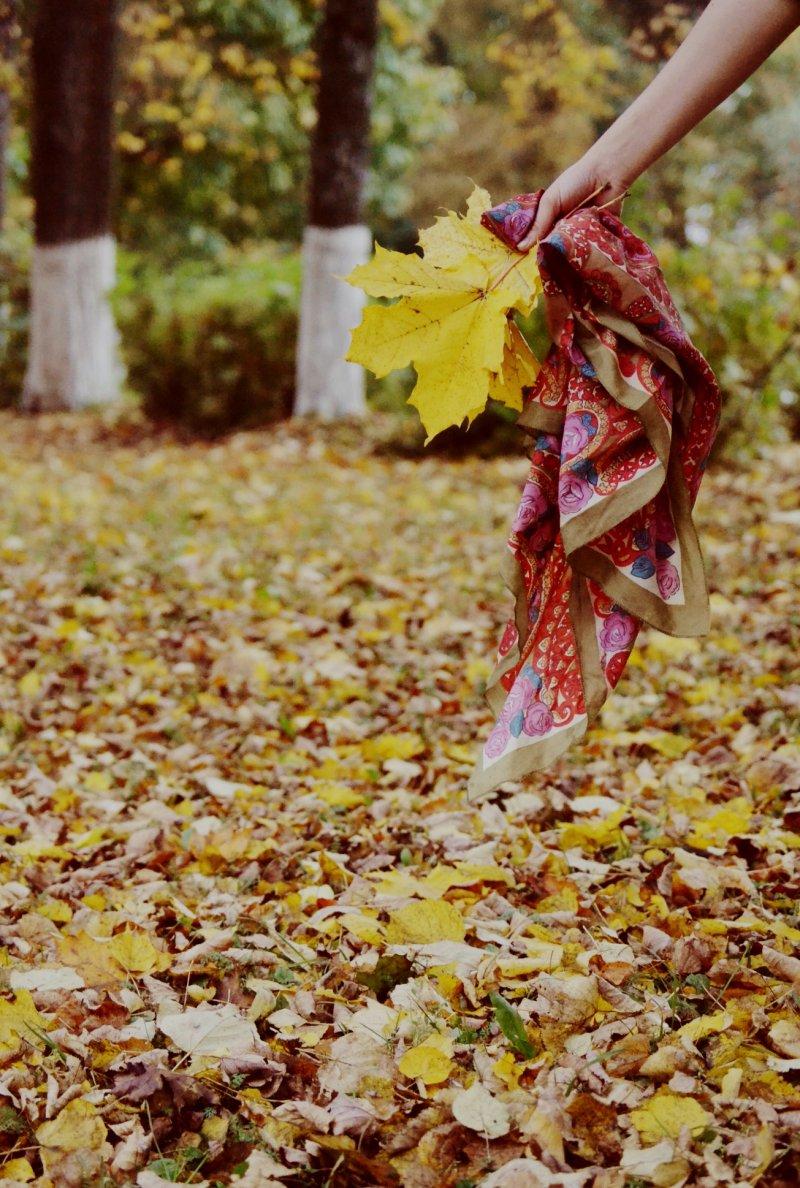 Настроение — свобода, © Светлана Матухно, Медынь, Фотоконкурс «Осень в городе»