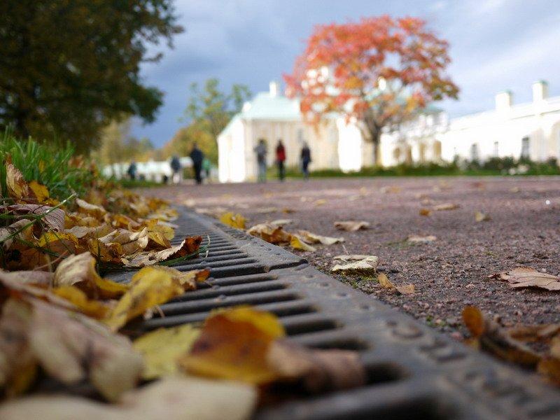 Осень в парке_2, © Дмитрий Вильгош, Сосновый Бор, Фотоконкурс «Осень в городе»