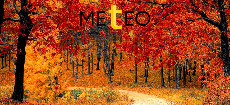 Фотоконкурс «Осенняя пора – очей очарованье»