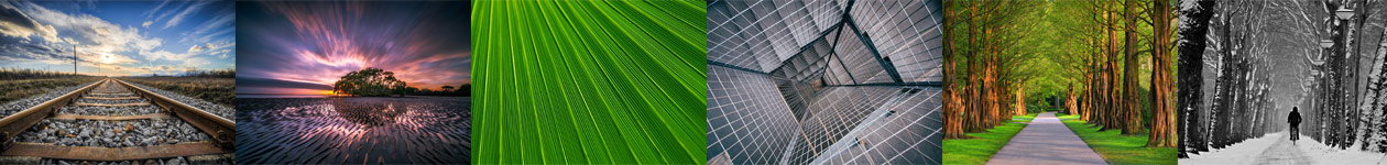 Фотоконкурс «Направляющие линии» — Leading Lines