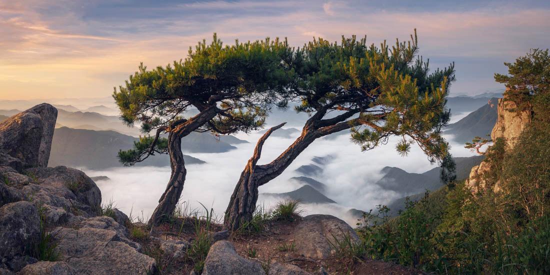 Вместе лучше, Дедунсан, Южная Корея, © Натаниэль Мерц, Корея, Победитель среди любителей 2018 года, Конкурс панорамной фотографии EPSON Pano Awards