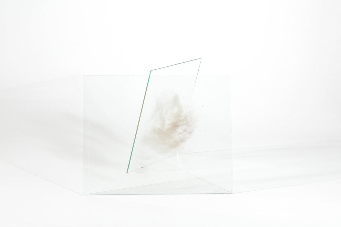 Дыхание и прах, © Кейтлин Дэниелсон, Риджвуд, Нью-Йорк, США, Победитель категории «Абстракция / Смешанная техника», Фотоконкурс PDN Curator Awards