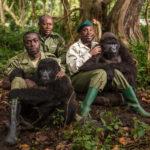 Национальный парк Вирунга, © Адам Кифер, Уинтер-Парк, США, Финалист категории «Любитель: Персональная работа», Конкурс портретной фотографии «Лица»