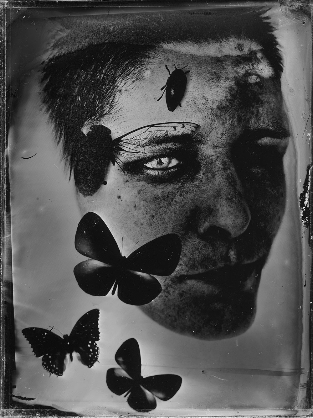 О себе. Гибриды, © Маржена Коларц, Польша, Финалист категории «Профессионал: Автопортреты», Конкурс портретной фотографии «Лица»