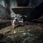 У Конзу, © Риккардо Коллелли, Катания, Италия, Первое место в категории «Фуд-фотография» : Любитель, Конкурс фотографии «Перспективы» — Perspectives PhotoPlus Expo
