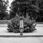 Головное дело, © Роман Триплер, Хеннеф, Германия, Первое место в категории «Портреты» : Любитель, Конкурс фотографии «Перспективы» — Perspectives PhotoPlus Expo