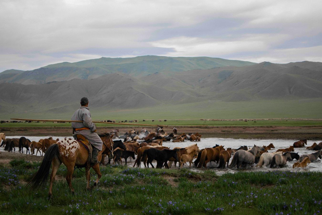 Времена года в Монголии, © Димитрий Сташевский, Филадельфия, США, Финалист категории «Портреты» : Любитель, Конкурс фотографии «Перспективы» — Perspectives PhotoPlus Expo