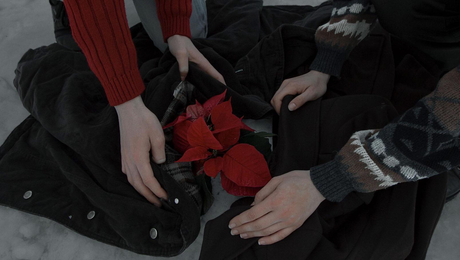 Цветок надежды, © Валерия Сагура и Андрей Шурпин, Номинация «Фотоистория без текста», Конкурс фоторепортажей CINE-BOOKS