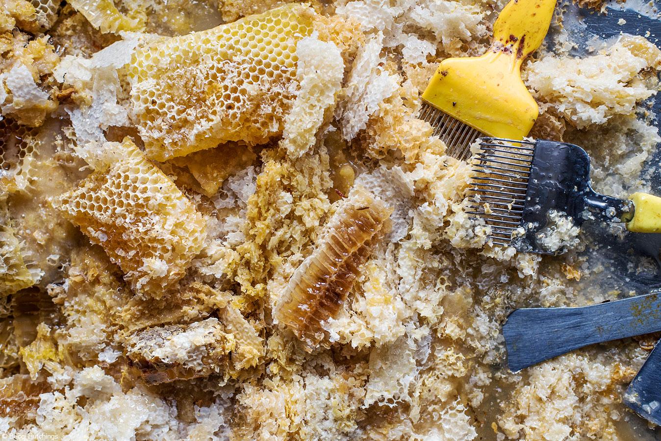 Соты и воск, © Бекки Хатчингс, Великобритания, 1-е место, категория «Студенческий Фуд-фотограф года», Фотоконкурс Pink Lady Food