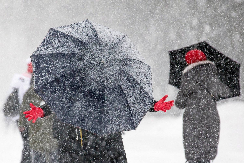 Во время снегопада на Воробьевых горах, © Михаил Джапаридзе, 2 место в номинации «Москва и москвичи. Комфортный город», Фотоконкурс «Планета Москва»