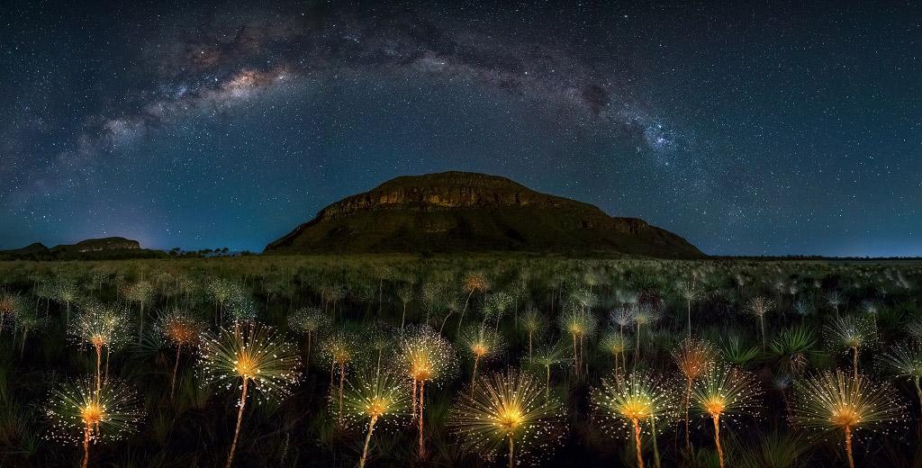 Вечер с убывающей луной и ясным небом, Тейбллендс Веадейрус, Бразилия, © Марсио Кабрал, 1 место в категории «Ночной пейзаж», Фотоконкурс «Ночной пейзаж» — Photo Nightscape Awards