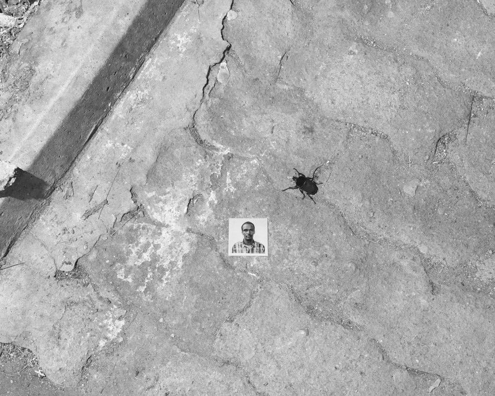 Портрет с жуком, © Эли Дерст, Премия Портфолио «Апертура»