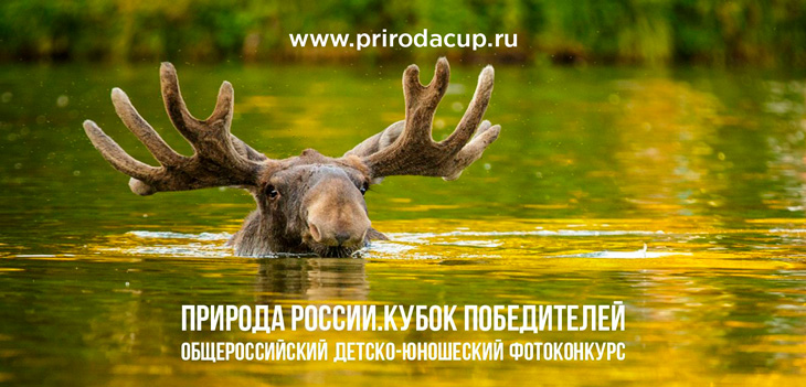 Детско-юношеский фотоконкурс «Природа России. Кубок победителей»
