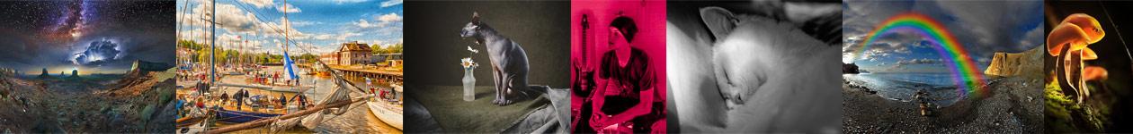 Конкурс фотографий «Творчество без границ» от Prophotos