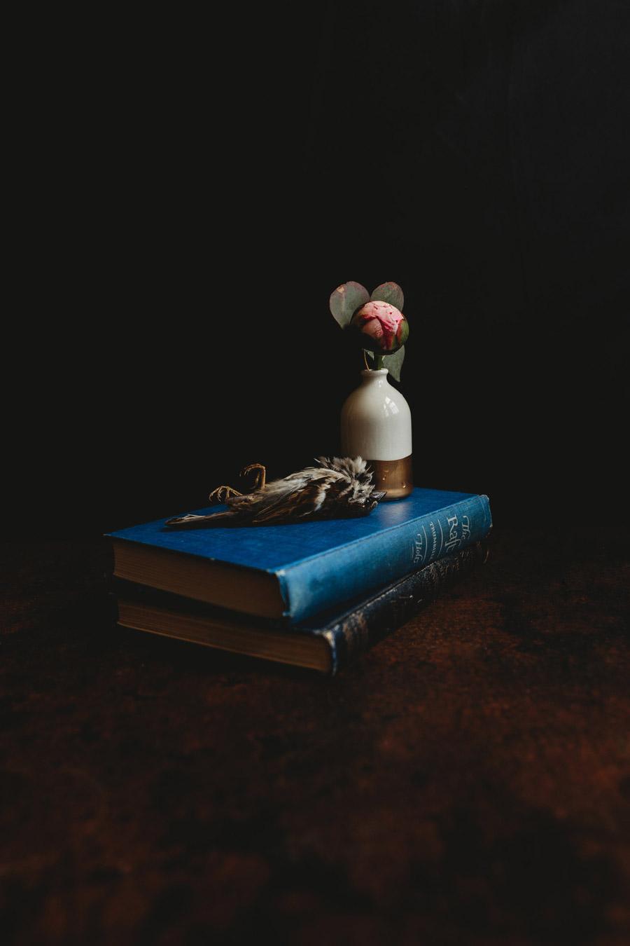 Без названия, © Эбигейл Майлз, Нина, США, Первое место в категории «Натюрморт», Фотоконкурс «Художественная фотография» — Fine Art