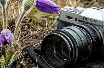 Фотоконкурс «Растворись в природе» от Мосприроды
