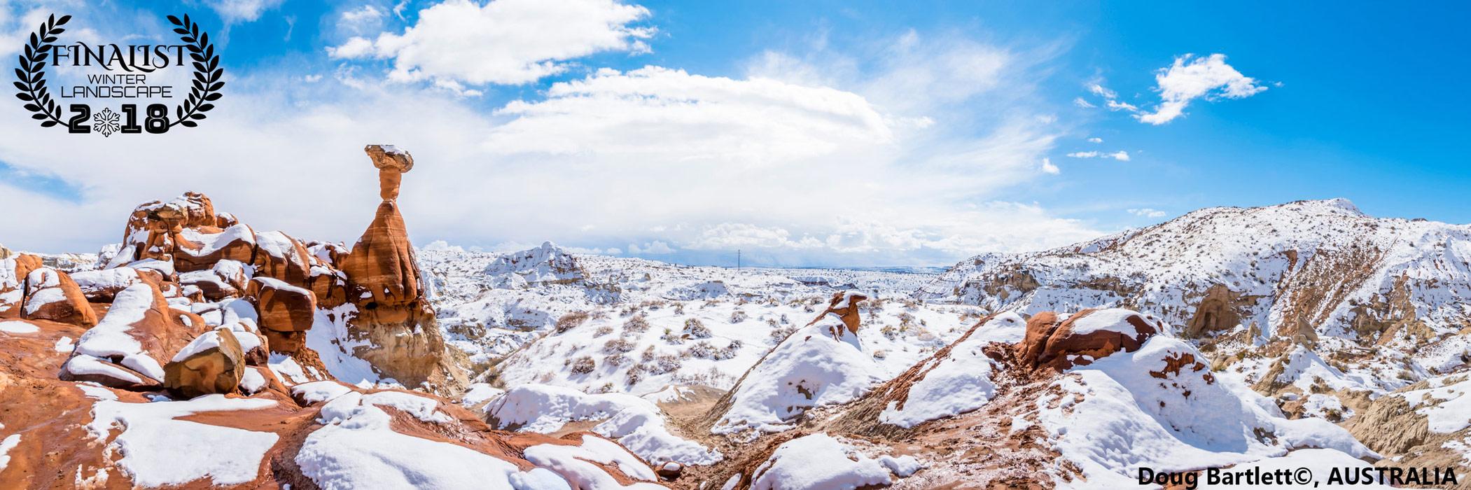 Зимняя заколдованная поганка, © Дуг Бартлетт, Австралия, Финалист фестиваля «Зимний пейзаж», Фотоконкурс пейзажа журнала Renner