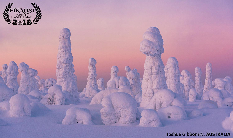 Страна мороженого, © Джошуа Гиббонс, Австралия, Финалист фестиваля «Зимний пейзаж», Фотоконкурс пейзажа журнала Renner