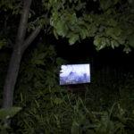 © Дарья Асланян, проект «Красные жучки», Номинация «Арт проект», 2 место, Фотоконкурс «Род. Семья. Традиции»