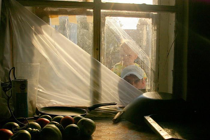 Наблюдения, © Альбина Краснослабодцева (г.Чебоксары), Чебоксарский фотосайт (фотоклуб), Всероссийский фотоконкурс «Россия — отчий дом»
