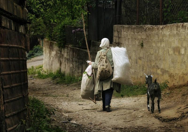Дорога домой, © Войнов Дмитрий, Адыгейское региональное отделение СФР, Всероссийский фотоконкурс «Россия — отчий дом»