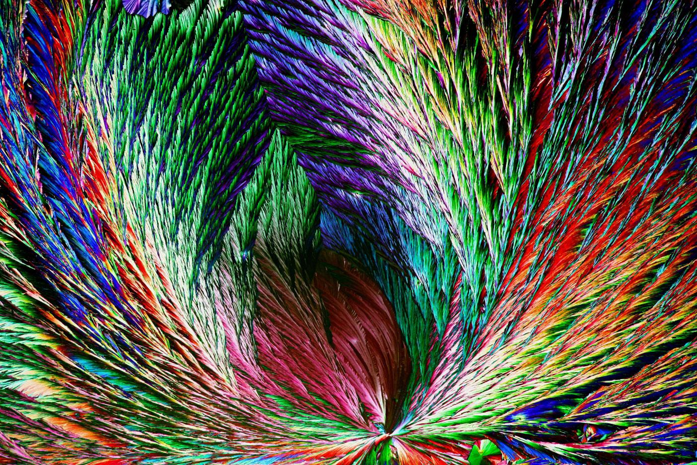 © Анри Коскинен, Органические кристаллы, Фотоконкурс Королевского общества биологии — Royal Society of Biology