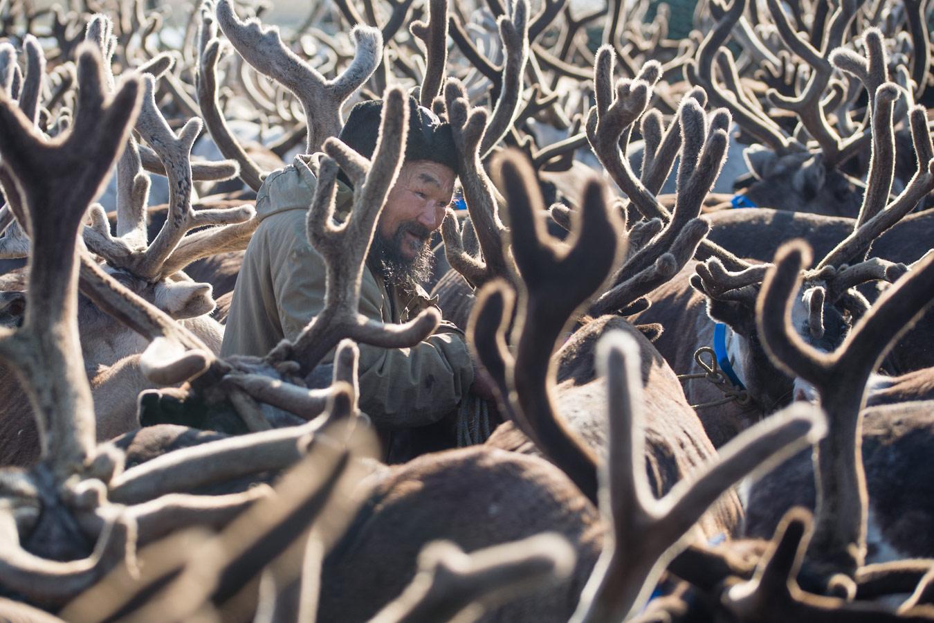 Портрет ненца, Ненецкий АО, © Сергей Ладыкин, 3 место, Фотоконкурс «Русская цивилизация»