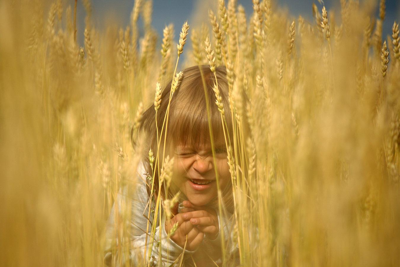 Игры в пшеничном поле, Омская область, © Анна Рыжкова, 2 место, Фотоконкурс «Русская цивилизация»