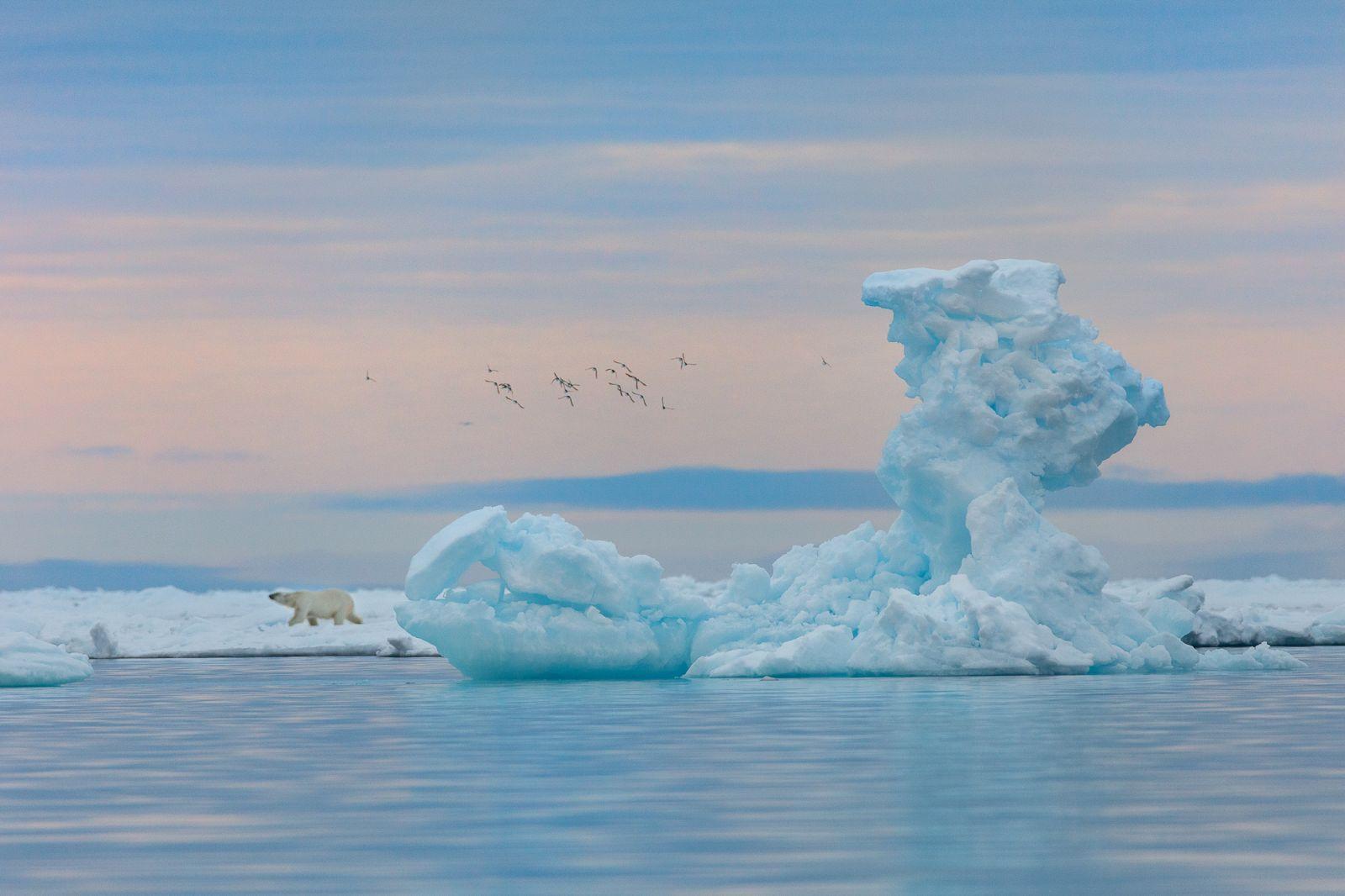 Ледяная клешня, © Николай Гернет, Финалист фотоконкурса «Самая красивая страна – 2018»