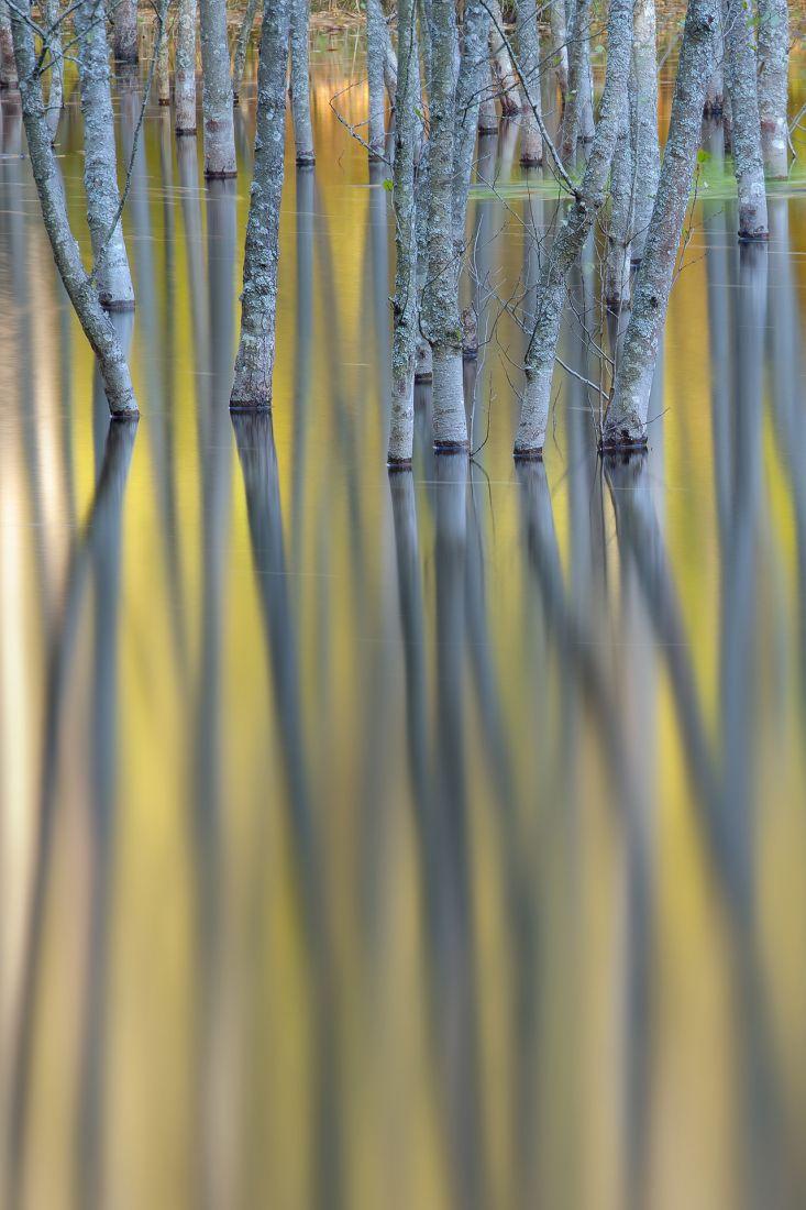 Обыкновеная осень, © Дмитрий Кулагин, Финалист фотоконкурса «Самая красивая страна – 2018»