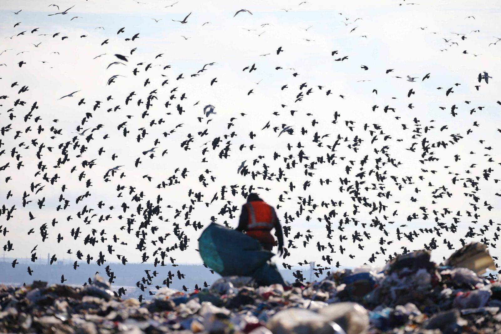 Полигон ТБО «Новый свет - Эко», © Русское географическое общество, Финалист фотоконкурса «Самая красивая страна – 2018»