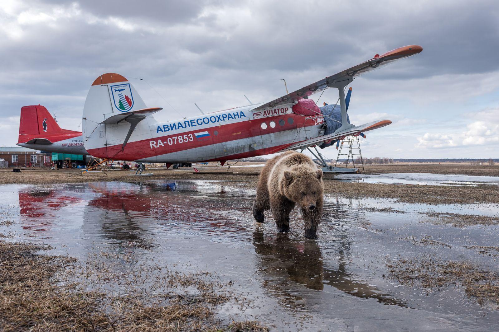 После полета, © Татьяна Белякова, Финалист фотоконкурса «Самая красивая страна – 2018»